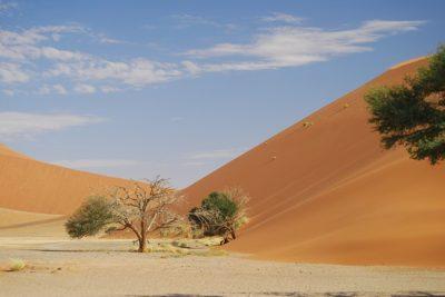 Sossusvei - Namibia
